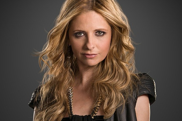 Sarah Michelle Gellar Sitcom TV Return