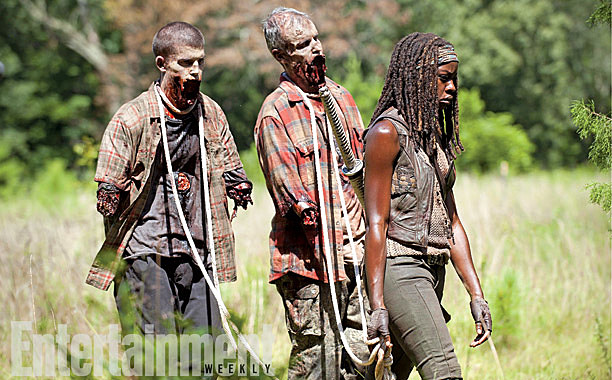 The Walking Dead Season 4 Photos After 2014 Michonne