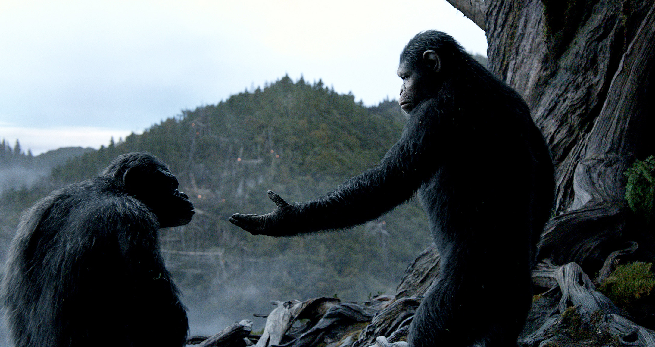 Dawn of the Planet of the Apes [REVIEW] | Behind the ... |Dawn Of The Planet Of The Apes 2014