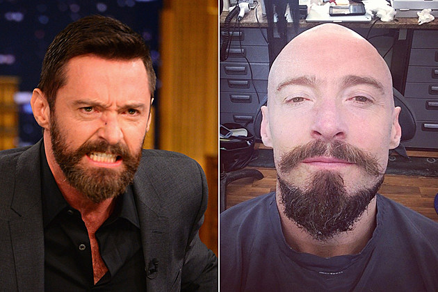 Hugh Jackman Bald Blackbeard