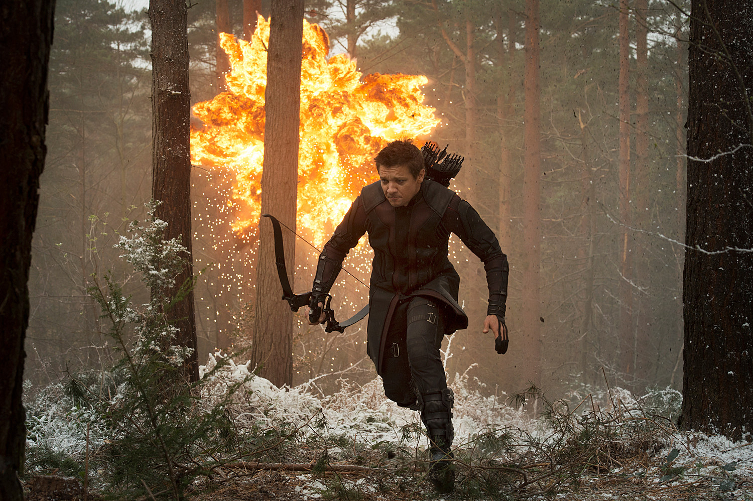 Avengers 2 Photo Jeremy Renner Hawkeye
