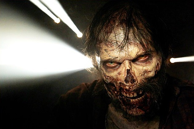 The Walking Dead Spinoff Companion Series Pilot Order Official