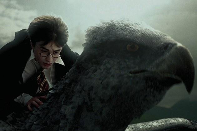 Fantastic beasts release date