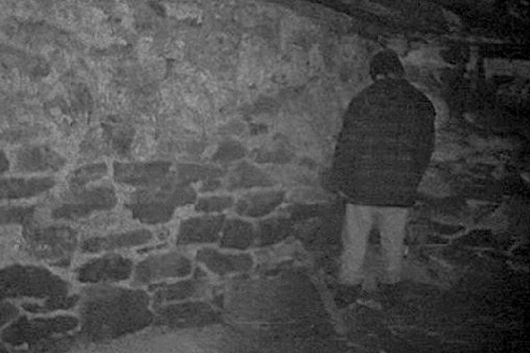 the blair witch project ending Why was mike standing in a corner at the end of the blair witch project the demographics of the blair witch project mostly include young adults aged 18 to 24.