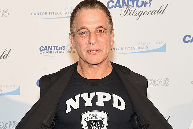 Tony Danza Netflix Series The Good Cop